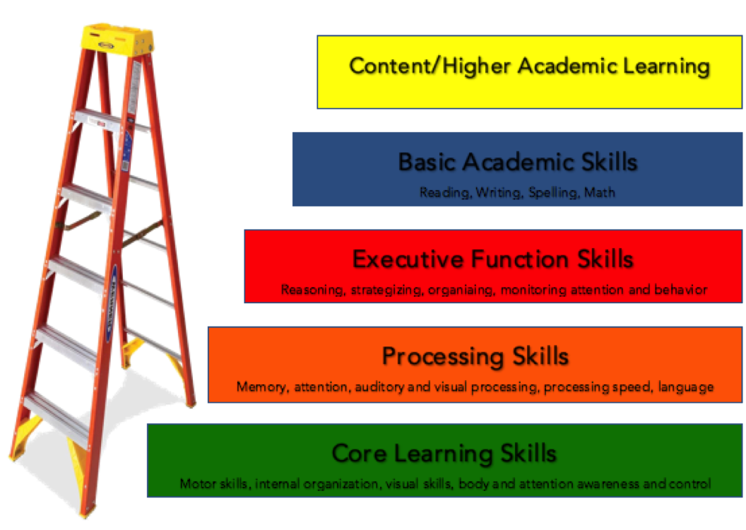 Learning Skills - Successful learning requires a continuum of skills we develop and hone beginning in early childhood
