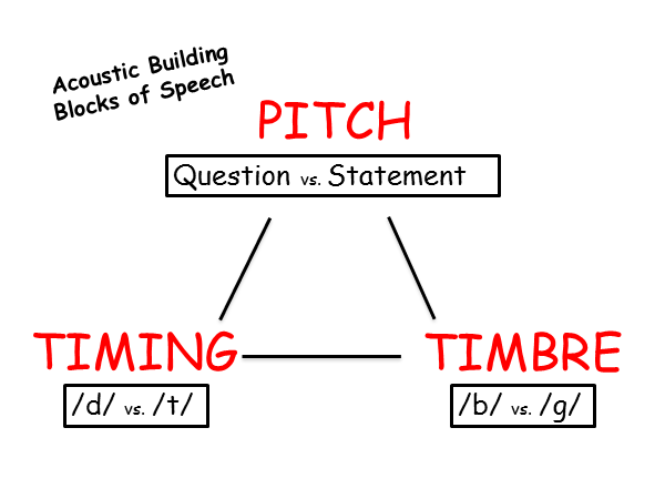 Building blocks of speech